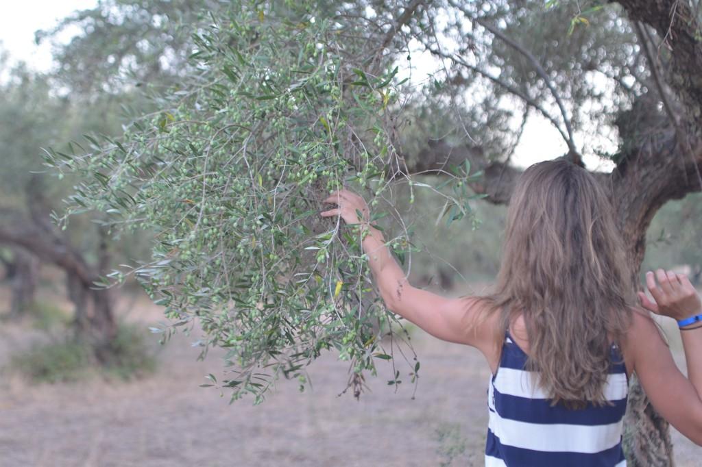peloponnese, greece