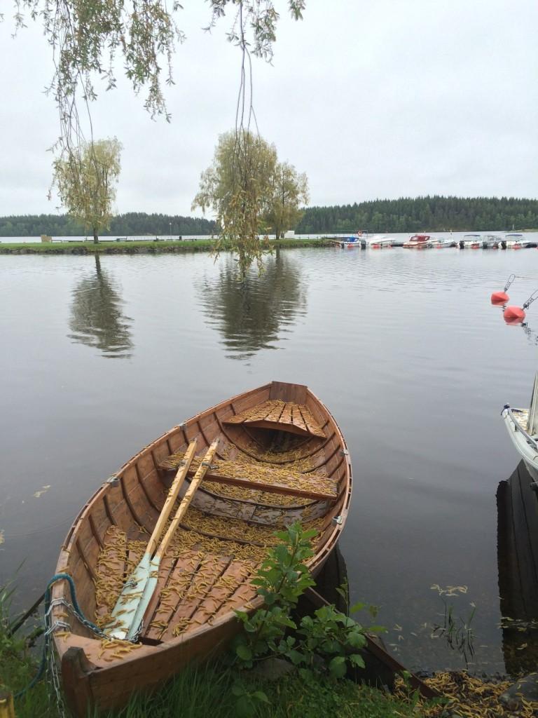 suomi,finland,savonnlina